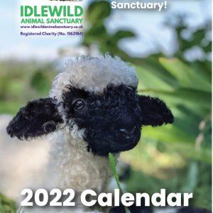 Idlewild 2022 Calendar