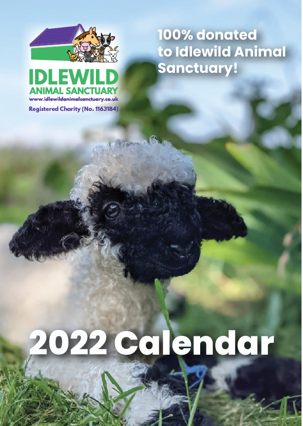 You are currently viewing Idlewild Animal Sanctuary 2022 Calendar